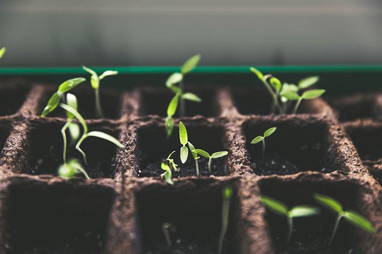 Bersama Menghasilkan Produk Pertanian Terbaik
